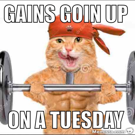 cat fitness motivation tuesday fatcattuesday
