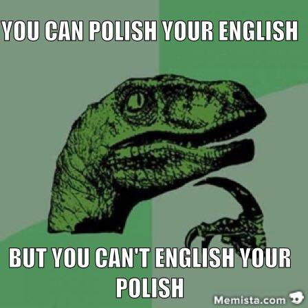 velociraptor english polish meme generator keyboard memista