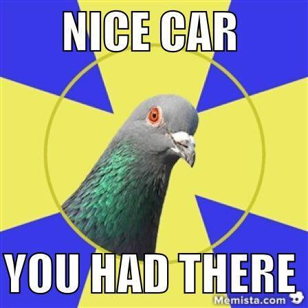 bird car nice destroy aww funny lol  meme generator keyboard memista